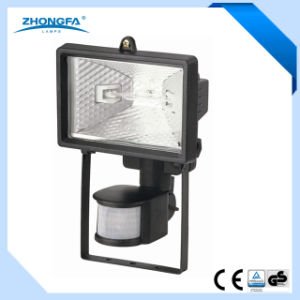 Ce GS Approved 120W Outdoor Lawn Light with Motion Sensor pictures & photos
