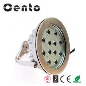 12W /36W Professional LED Underwater Light