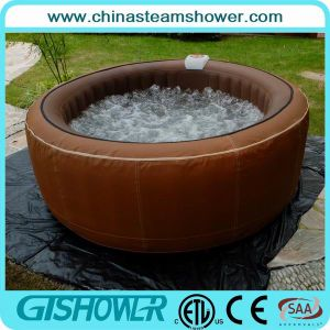 Large Deluxe Outdoor Jacuzzi Swim SPA (pH050010) pictures & photos