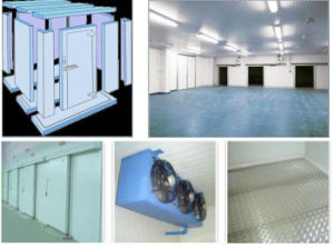 Walk in Cooler with Polyurethane Insulation Panel pictures & photos