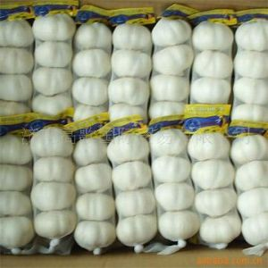 Export New Crop Pure White Chinese Garlic pictures & photos