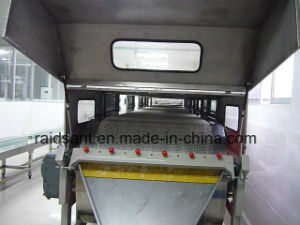 Rotating Stainless Steel Belt Pastillator pictures & photos