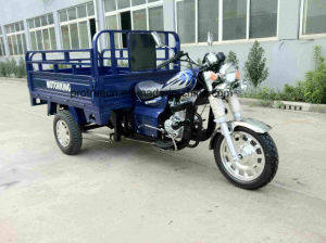 Three Wheel Motorcycle for Adults pictures & photos