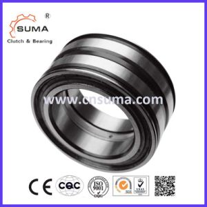 Double Row Full Complement Cylindrical Roller Bearing SL04 5007PP 2nr pictures & photos