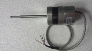 57blyd02-2453 24VDC Built-in Driver DC Motor for Pump pictures & photos