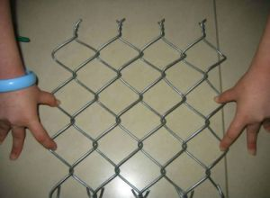 75*75mm PVC Coated Chain Link Fence Galvanized/PVC Coated Best Price High Quality pictures & photos