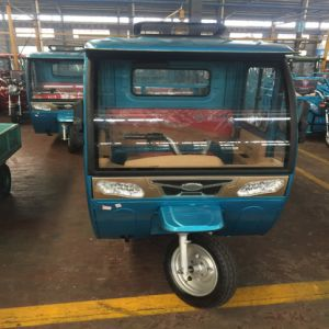 3 Wheel Adult Hybrid Gasolin and Electric Cargo Trike pictures & photos
