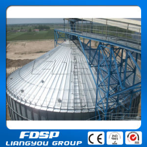 High Quality Sorghum Silo with Silo Feeding System pictures & photos
