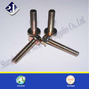 Good Quality Yellow Zinc Flange Bolt pictures & photos
