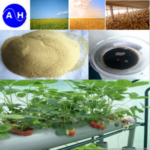 High Nitrogen Trace Element Nutrients Fertilizer Amino Acids pictures & photos