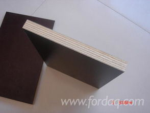 High Quality Poplar Fancy Plywood pictures & photos