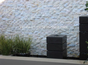 Natural Garden Wall Stone Cladding with High Quality pictures & photos