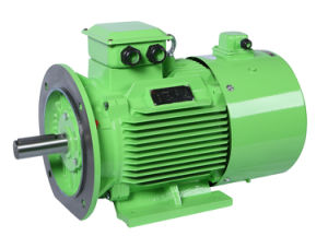 Permanent Magnet Electric Motor pictures & photos
