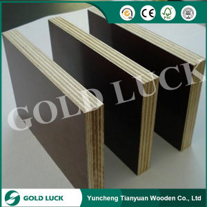 Various Quality of Film Faced Plywood pictures & photos
