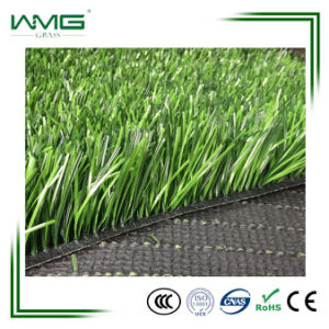 50mm/12000d/Muti-Use/Lawn Bowl Surfaces/Improved and Consistent Playing pictures & photos