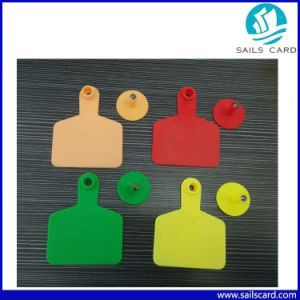 100*74mm Yellow Plstic UHF 860~960MHz RFID Cattle Ear Tags pictures & photos