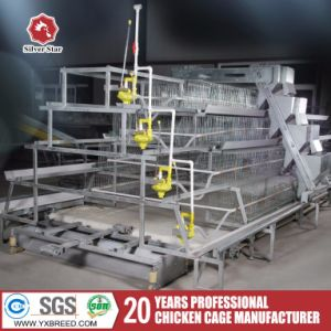 Cold Hot Galvanizing Chicken Hen Laying Equipment for Egg Birds (A-4L120) pictures & photos