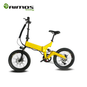 OEM Fashion Foldable 20inch 36V Rear Carrier Lithuim Battery Folding Ebike pictures & photos