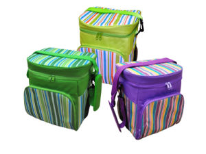 Cooler Bag (NF-C019) pictures & photos