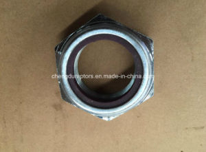 Lock Nut (206506) for Cummins Kta38 Engine pictures & photos
