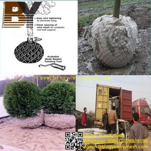 Transplant Root Ball Netting Tree Wire Basket pictures & photos