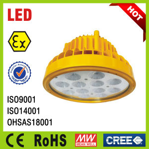Explosion Proof Lighting Fixture