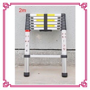 6 Step Multi-Times Single Telescopic Ladder pictures & photos