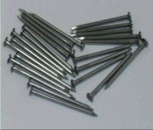 Hot-Selling Polished Common Nail/Flat Head Nails Export to Dubai, Saudi Arabia pictures & photos