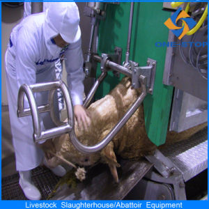 Cow Slaughterhouse Equipment with ISO Certificate pictures & photos