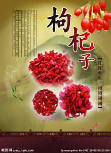 Goji Berry for Free Sample pictures & photos