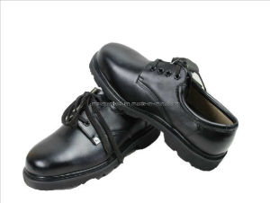 Safety Shoes (107)