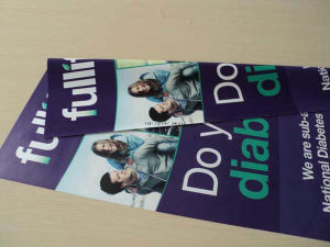 Custom Outdoor Indoor PVC Vinyl Flex Vinyl Printing Polyster Advertising Banner pictures & photos