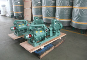 Sk Series Dual Stage Vacuum Pump (CE, ISO9001) (SK-6B) pictures & photos