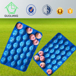 Food Grade Costco Polypropylene Plastic Packing Alveoli Tray for Fruit pictures & photos
