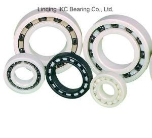 High Temperature Bearings 120° -360° Ceramic Bearings pictures & photos