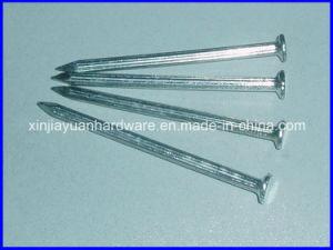 "Galvanized Steel Concrete Nails (2-1/2"") pictures & photos"