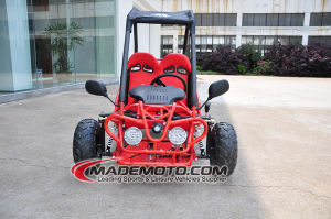 China Made Adult Go Carts pictures & photos