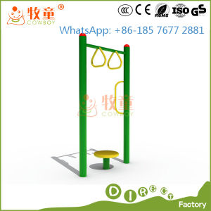 Gym Equipment for Outdoor Playground (MT/OP/FE1) pictures & photos