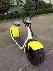 1000W Fat Tire Electric Scooter pictures & photos