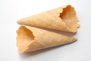 Natural Rimmed Jumbo Cone pictures & photos