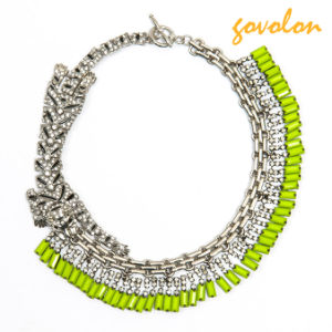 Special Jewellery Necklace Chain with Rhinestone and Leopard Decoration pictures & photos