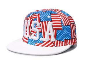 The American Flag Pattern Hip-Hop Baseball Cap Straw Hat (03010) pictures & photos