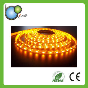 Warm White FPC Material LED Lighting Strip pictures & photos