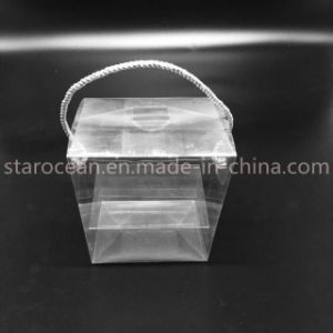 Plastic Transparent Packaging Box Plastic Packaging pictures & photos