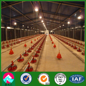 Pre-Engineered Prefabricated Broiler Chicken House of Angola Poultry Farm (XGZ-PH011) pictures & photos