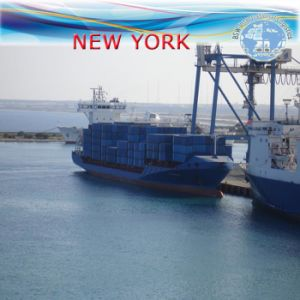 LCL Freight Forwarder to New York by Carrier Hanjin pictures & photos