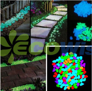 Garden Walkway Aquarium Decor Light pictures & photos
