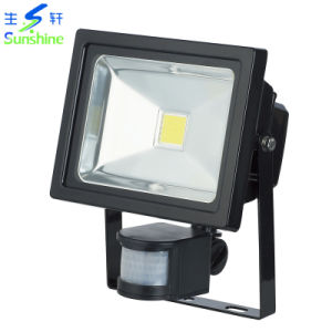 20W LED Floodlight with CE, CB, GS Certificate/LED Outdoor Lighting