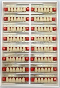 Manufacturer of 2 Layer Teeth for Upper Anterior Packing