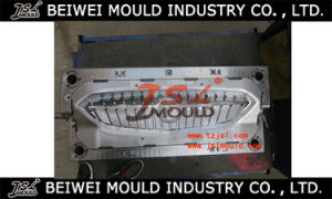 Plastic Auto Grille Injection Mould pictures & photos